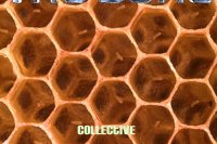The Dome: Collective